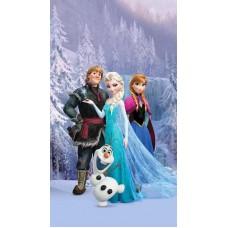 Jégvarázs, Frozen, Elsa és barátai függöny